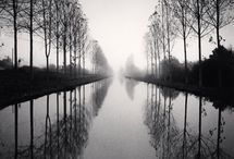 B&W Photography : Nature