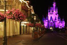 Walt Disney World Tickets / Walt Disney World ticket options.