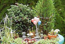 Fairy Gardens / Miniature gardens / by Mylene