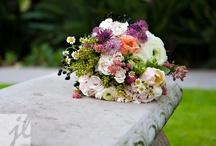 Florals / by Alicia A.