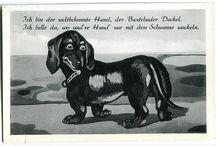 Buxtehudde