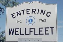 Wellfleet / by Jennifer Stebbins Lis