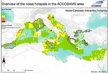 "Marine noise - marine ""noise pollution"" / marine noise, marine nois pollution, marine noise reduction, marine sciences, marine biology"