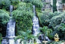 Everything Gardening / Gaylord Hotels is famous for the landscaping both inside the atriums and on the exterior grounds. These green spaces are landscaped with a large variety of plants, flowers and trees. / by Gaylord Hotels