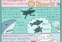 H9 アニマル図鑑