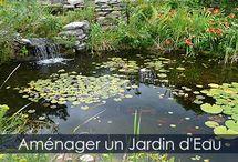 Bassin de Jardin / Guide d'aménagement d'un bassin extérieur ou bassin de jardin. Guide détaillé des étapes de construction.