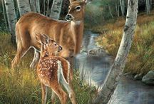 Animals / by Donna Gallup