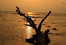 Explore Pramuka Island [operator : Putri Yulia Indriana] / Explore Pramuka Island September 14 - 15, 2013 Link : http://triptr.us/tg