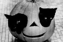 {hallow's eve} / The most vonderful time ov the year!
