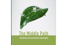 environmental work