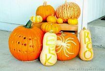 Pumpkins Patch Designed