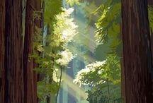 California / by Earline Harrington