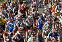 BIKELIFE ACTIVE - Sport Fitness Festival 27, 28, 29 giugno 2014 / BIKELIFE ACTIVE è l'appuntamento che rientra nel programma SPORT FITNESS FESTIVAL (organizzato dall'Amm. Comunale), e si rivolge agli appassionati di ciclismo e di cicloturismo.  BIKELIFE ACTIVE, il luogo perfetto in cui proporre la bicicletta non solo come mezzo, ma come stile di vita sano e in armonia con la natura.