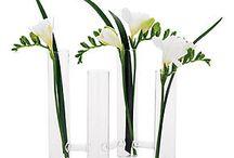 Deco de Vase ( Grand tube Transparant )