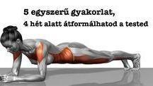 A test átformálása