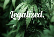 Glo Girl: Marijuana