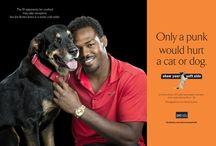 "Show Your Soft Side / Sande Riesett is the mastermind behind Show Your Soft Side, a hubba hubba ad campaign that started in Baltimore in 2011 in response to a shocking string of animal abuse cases: a nursing cat and a dog both set on fire; a puppy beaten to death on a golf course. Show Your Soft Side ""was developed to change the mindset of young people who often view the maiming and torturing of defenseless cats and dogs as a sign of 'toughness' or 'manhood.'"" 