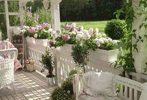 garden, patio, terrace