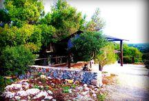 Αγαλάς, Ζάκυνθος / Agalas, Zakynthos / http://elenitranaka.blogspot.gr/2016/04/agalas-zakynthos.html