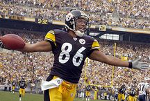 steelers / by Shelly Williams