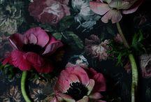 Florals pattern