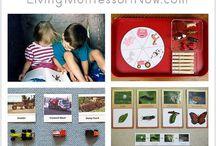 Home School Montessori: UNIT STUDIES
