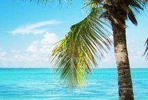 Strand vakantie / (