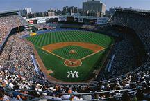 MLB Baseball / Vegas coverage offers daily Picks and Predictions on All MLB Baseball Games