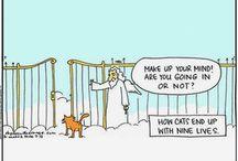 Gatos (Todos encestamos un tablero así)