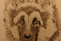 Pyrography / My pyrography works