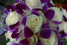 Wedding Ideas with Orchids / This is Waldor Orchids board on Wedding Ideas. Let us know if we can help you with your wedding needs. 609-927-4126 in the New Jersey area.