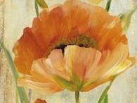 flores espatulado