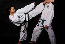 Martial Arts / Martial arts in general but strong focus on Taekwon-Do and Karate styles