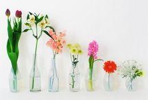 Bottle and Jar / by Kyoko Terada