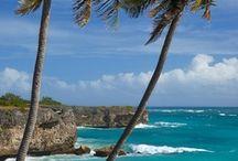 Barbados / All things Bajan