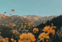 Nature's beautiful
