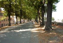 Lucca in Tuscany / All about the city of Lucca in Tuscany.