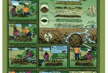 The Farm / by Tamara Power-Drutis