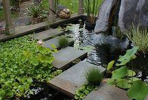 Jardines con Agua