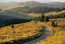 Two wheels / We love two wheels, with or without an engine to cheat with. We also know how to find riders that get lost.