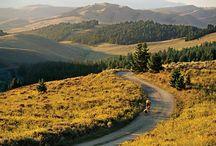 Trails on Trails