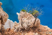 Zakynthos Island / www.santophoto.co