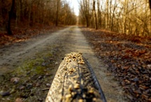 On The Trail / Scenes for bicycling trails in Kansas ... mountain bike trails, rail-trails, paved trails, and more!