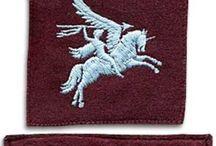 Airborne insignes