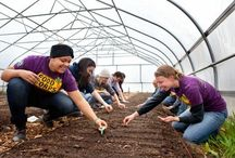 Our Service Members / FoodCorps recruits talented leaders for a year of paid public service building healthy school food environments in limited-resource communities. We'll post our #FoodCorps service members here as they're featured!