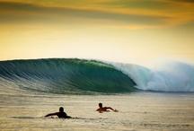 Surf §