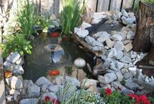 Garden - Gardening