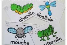 thème insectes
