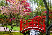 Japanese Gardens / Great Inspiration for Miniature Gardeners