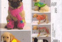 Hunde Style und Ernährung